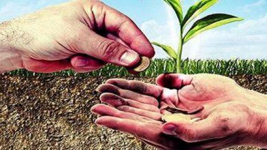 شراكة بين الفقير والغني