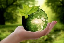 يوم البيئة العالمي
